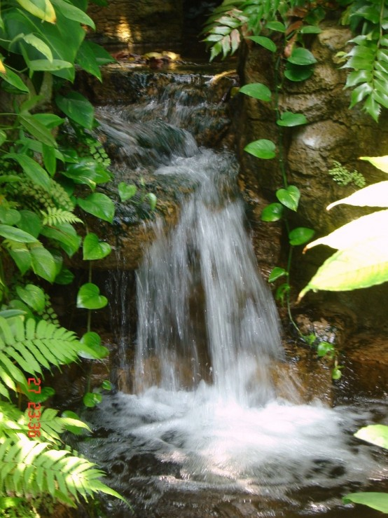 The Water Of Life Nzccm